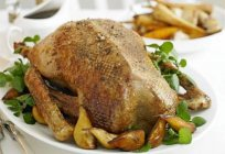 A traditional dish for Christmas and beyond: a goose recipe in the oven