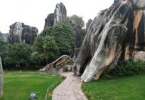 Stone forest China – amazing wonder of nature