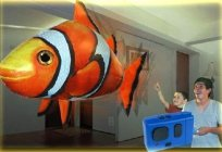 Flying fish-a hit of sales in the world of children's toys