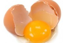 How to test the freshness of eggs: tips
