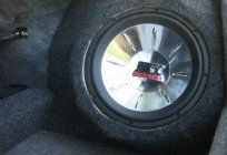 How to set the subwoofer in the car? Stepwise description of the process