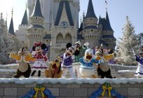 Tokyo Disneyland (Japan): description, history, entertainment and traveler reviews