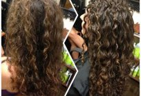 The best shampoos for curly hair: rating. Shampoo for curly hair