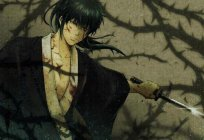Hijikata Toshiro is a character from the animated television series Gintama: description, biography