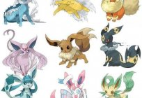 Eevee (pokemon): description and evolution