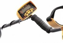 Garret Ace 250 (detector). Metal detector Garret Ace 250: specifications, reviews, prices