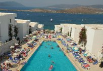 Peda Hotels Gumbet Holiday Beach 3* (Bodrum) - photos, rates, and reviews of tourists