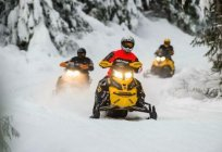 BRP (snowmobile): an overview, features, and repair