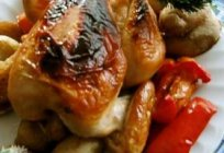How to prepare chicken in the marinade in the oven