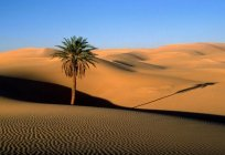 Deserts of the world and their characteristics