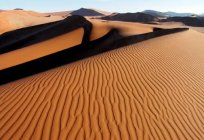 What major desert is located in South America? One of the largest deserts in the world in South America