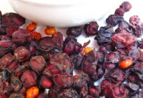 Schisandra chinensis: the therapeutic properties and contraindications