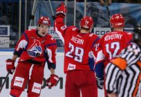 Averin Egor Valer'evich, hockey player biography, sports achievements