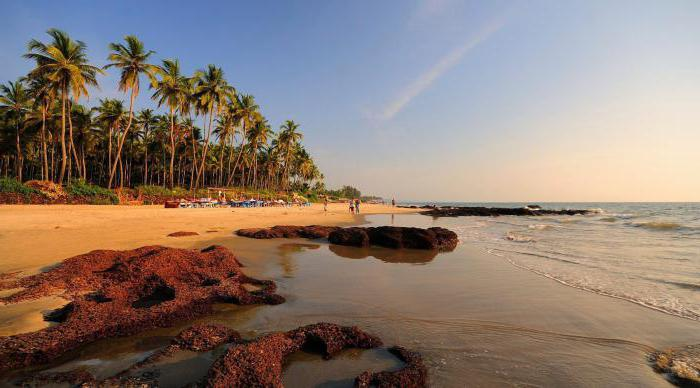 the North Goa attractions and surroundings