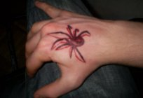 Tattoo spider: variety and value
