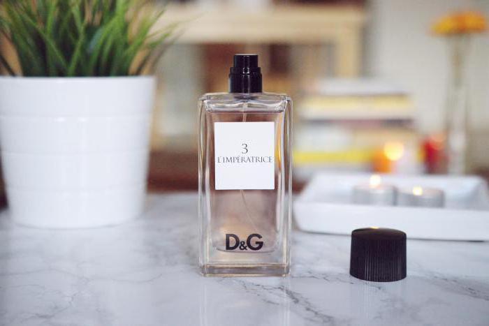 Gabbana De Dolceamp; The Descripción ClientesLa OneOpiniones GUqzVpSM