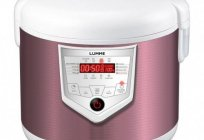 Slow cooker Lumme LU-1446: reviews, description, specifications, characteristics
