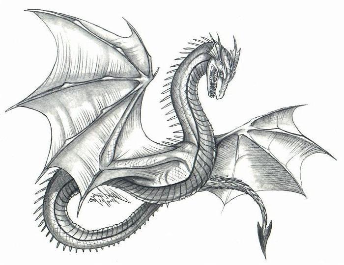 Dibujos De Dragones Con El Lápiz Atrae La Mirada Con Una Hoja De Papel