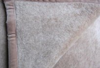 Camel blanket: sizes, prices. Reviews about manufacturers